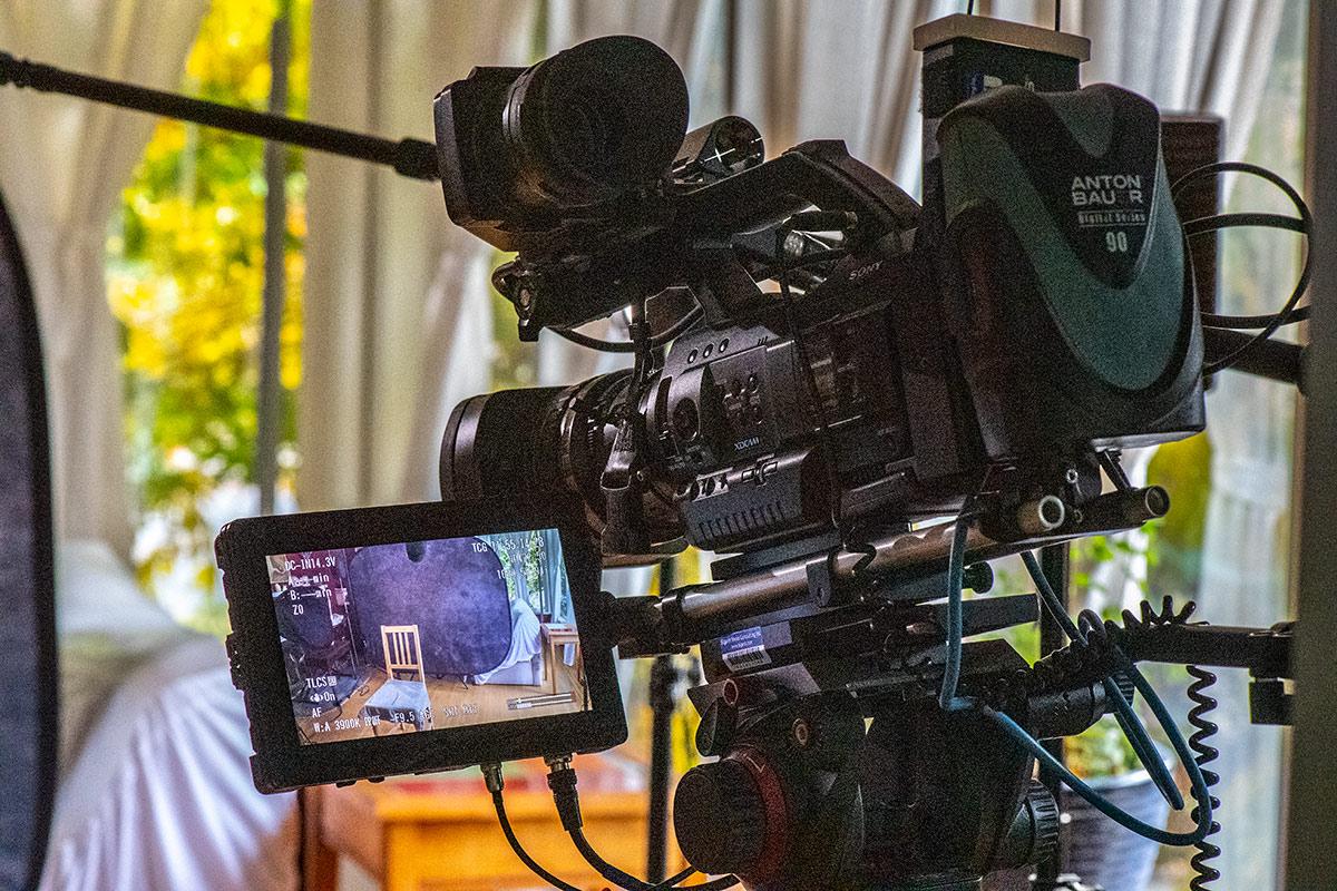 Video camera and monitor